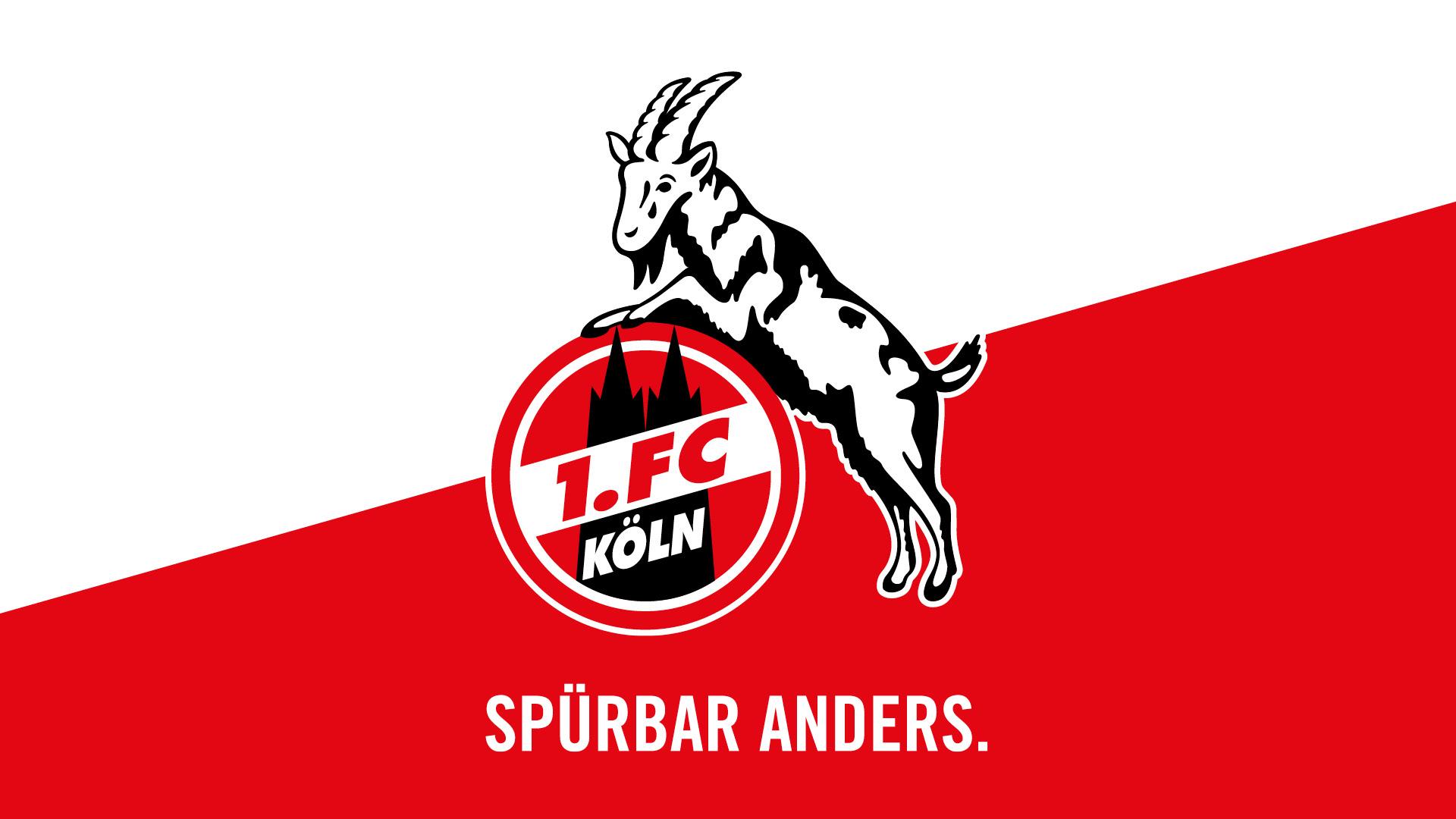 Hundewarnschild Anti Gladbach Achtung alle Köln Leverkusen und